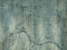 [picture: Plaster texture]