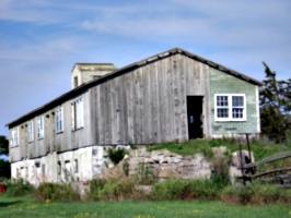 [picture: Old barn 4]