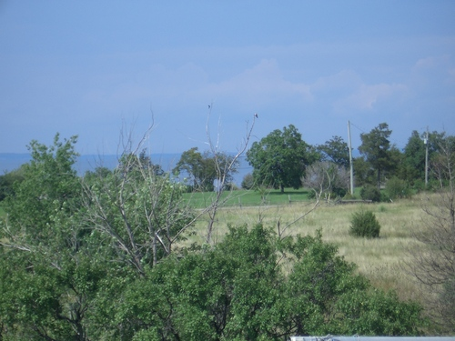 [Picture: View from the barn roof 2]