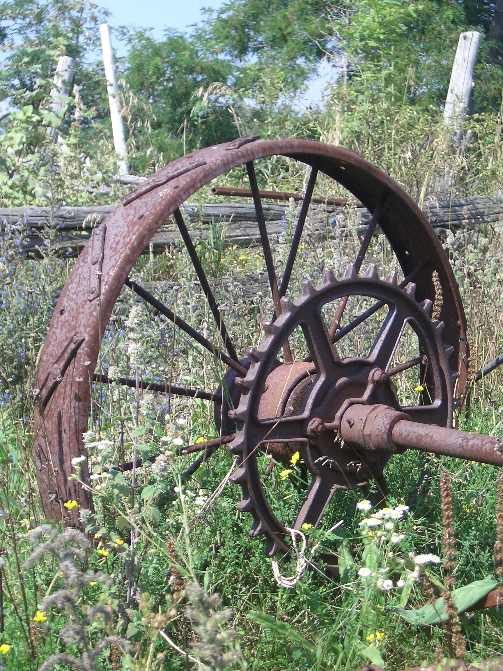 [Picture: Old tractor wheel]