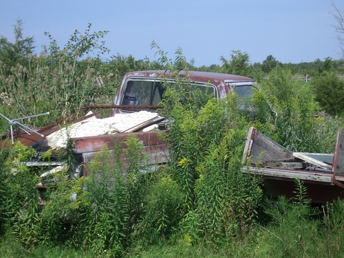 [Picture: Abandoned car]