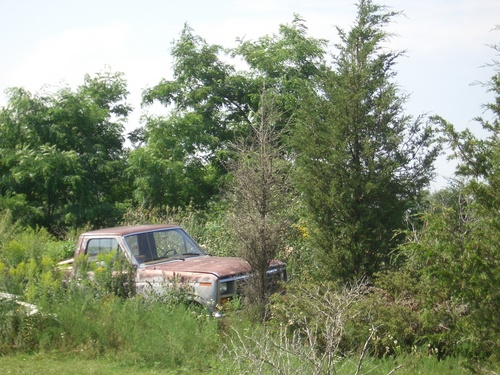[Picture: Abandoned car 3]
