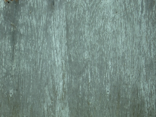 [Picture: Old wood texture]