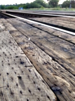[picture: Railway lines 2]