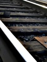 [picture: Railway lines 3]