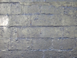 [picture: Painted brick wall]