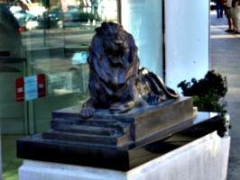 [picture: Bronze lion 2]