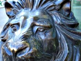 [picture: Bronze lion 4]