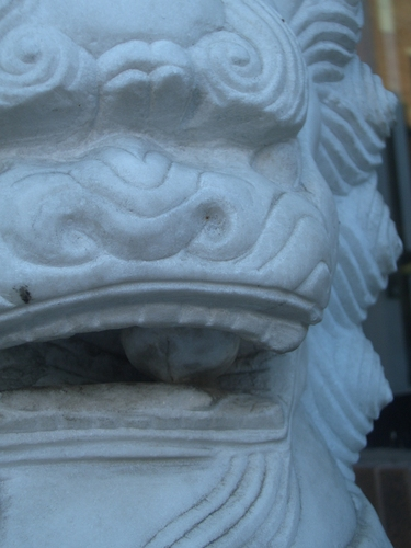 [Picture: Chinese lion's mouth]