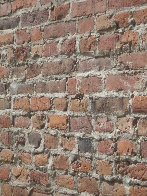 [Picture: Old brick wall 4]