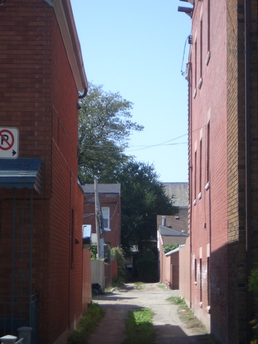 [Picture: Toronto alleyway]