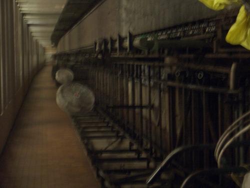 [Picture: blurry bike rack]
