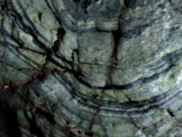 [picture: Merlin's Cave 12: rock texture 3]