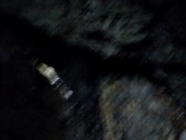 [picture: Dark blur]