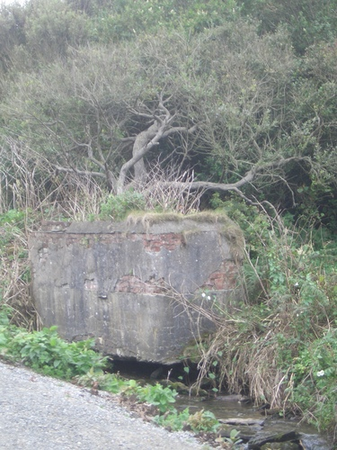 [Picture: Horse drinking trough with trees]