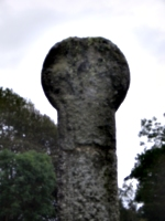 [picture: Standing Stone]