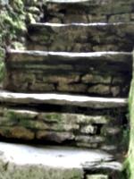 [picture: Restormel Castle 22: Stone stairway to heaven 3]