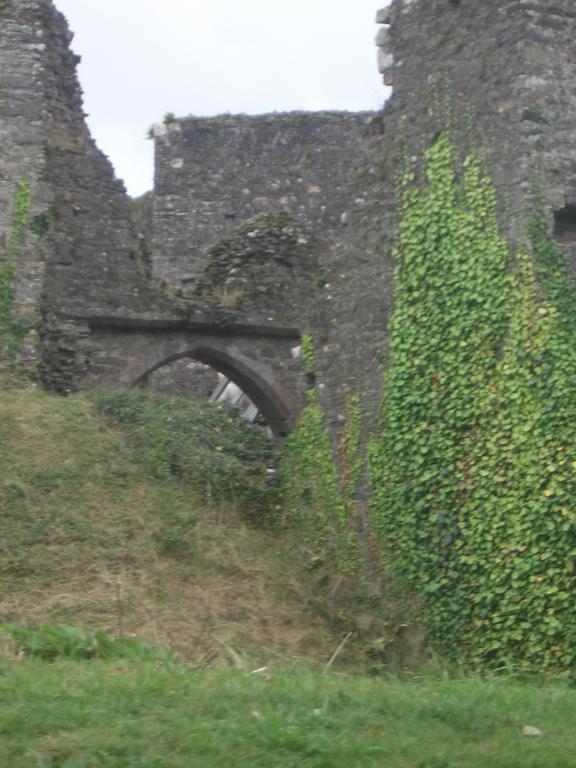 [Picture: Restormel Castle 2: Grassy bank]