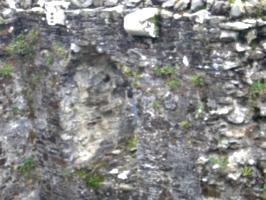 [Picture: Restormel Castle 17: Corbels]