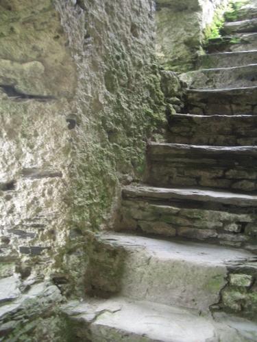 [Picture: Restormel Castle 21: Stone stairway to heaven 2]
