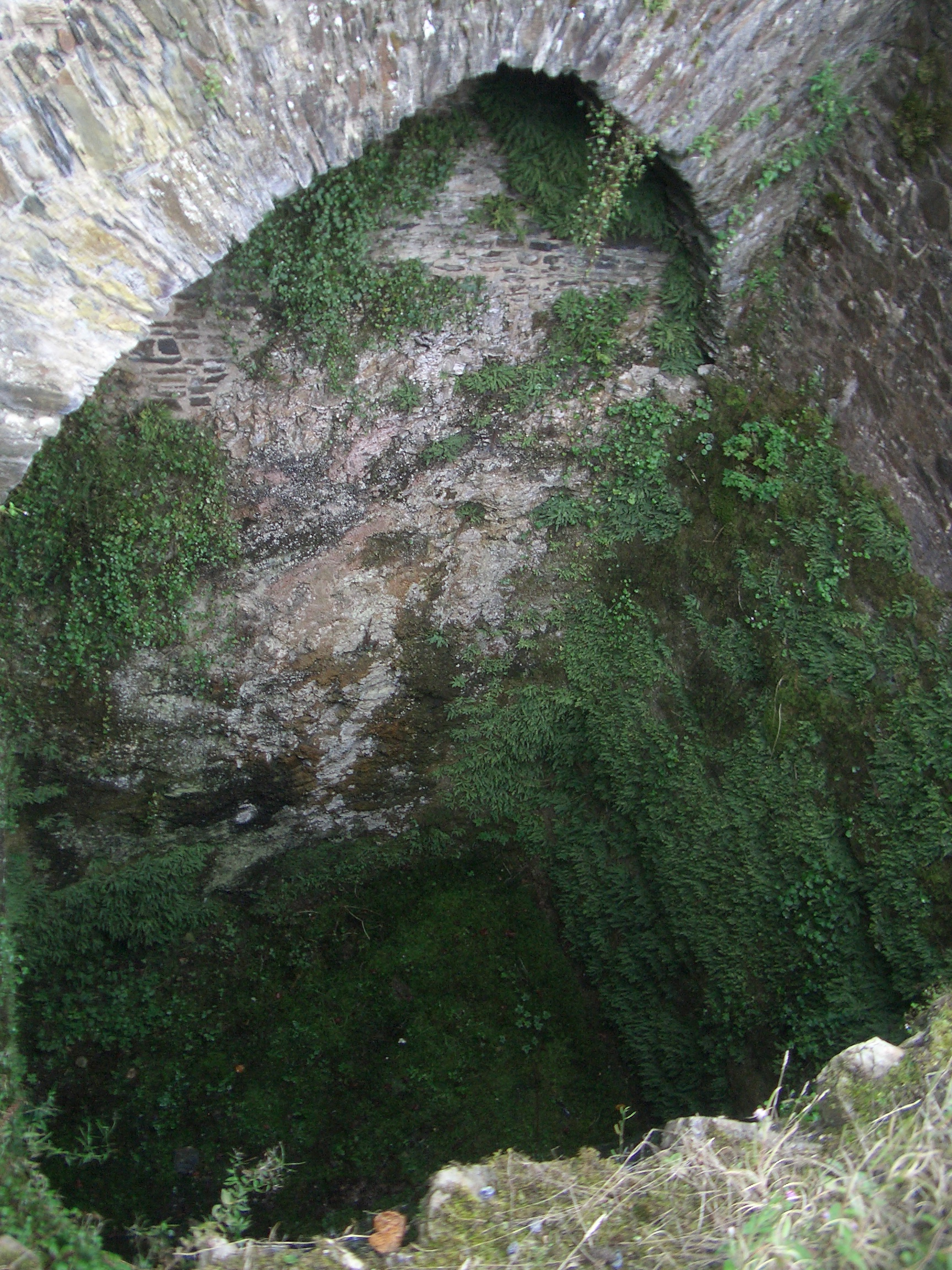 [Picture: Restormel Castle 28: Looking down the well]