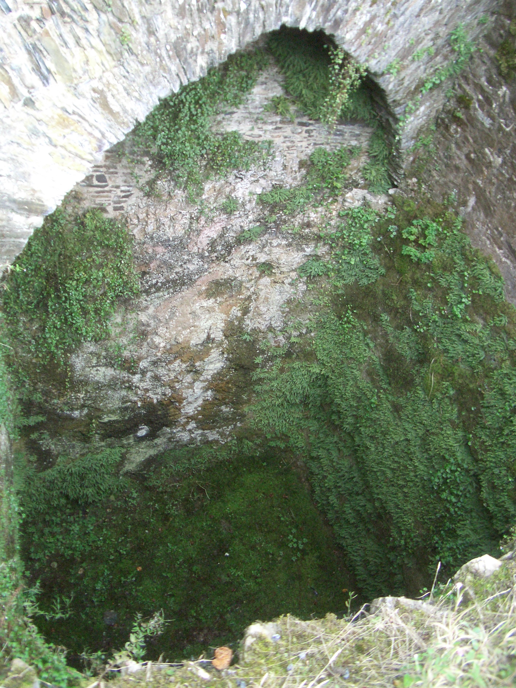 [Picture: Restormel Castle 29: Looking down the well 2]
