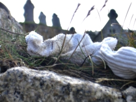 [picture: Sock offering]