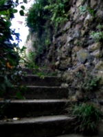 [picture: Stairs to the light 2]