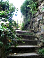 [Picture: Stairs to the light]