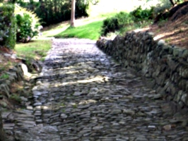 [picture: Cobbled path 2]