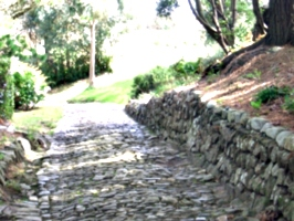 [picture: Cobbled path 3]