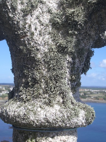 [Picture: Encrusted stone cross]