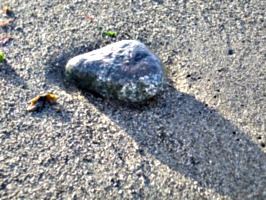 [picture: Small rock on the beach]