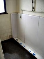 [picture: Porthallow Public Toilet 2]