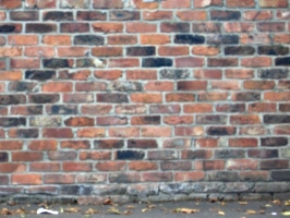 [picture: brick wall]