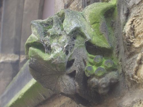 [Picture: cobweb-covered gargoyle]