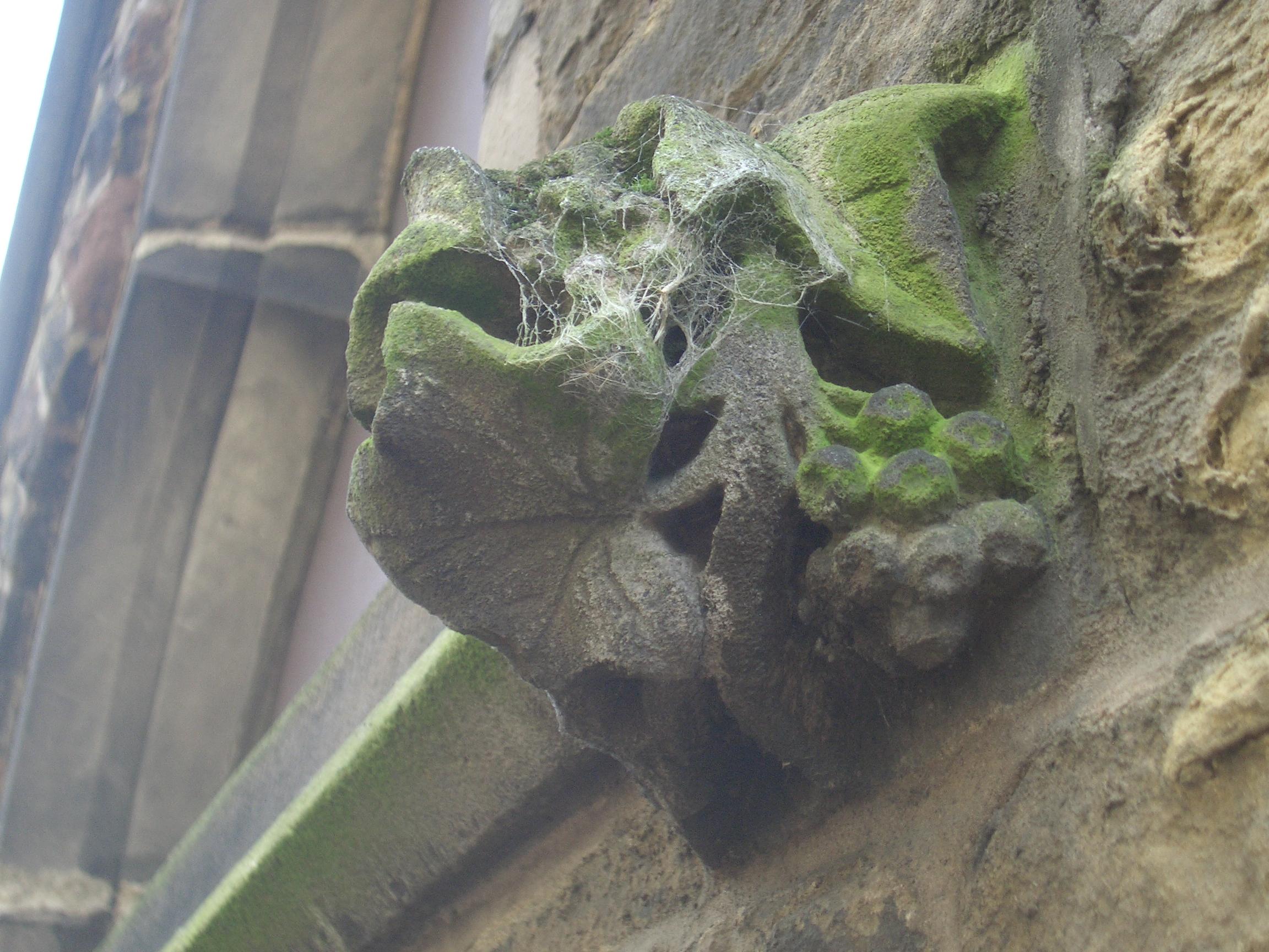 [Picture: copweb-covered gargoyle 2]