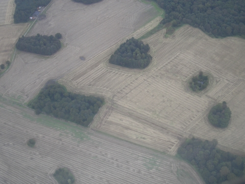 [Picture: English fields from above 4]