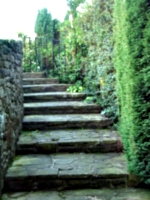 [picture: Winding stone stairs in the garden 2]