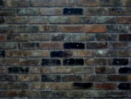 [picture: hand-made brick wall 2]