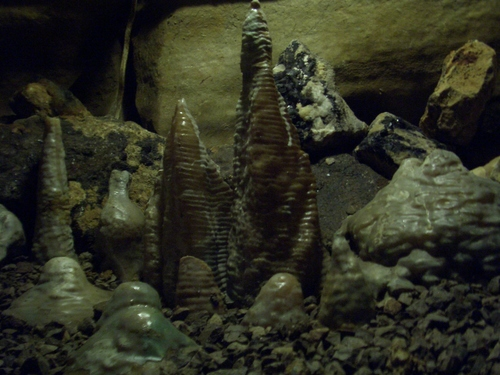 [Picture: Blue John Mine 19: stalagmites]