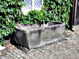 [picture: Drinking Trough]