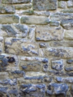 [picture: Old stone wall]