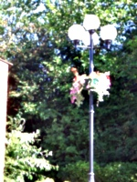 [picture: Lamp-post with flowers]