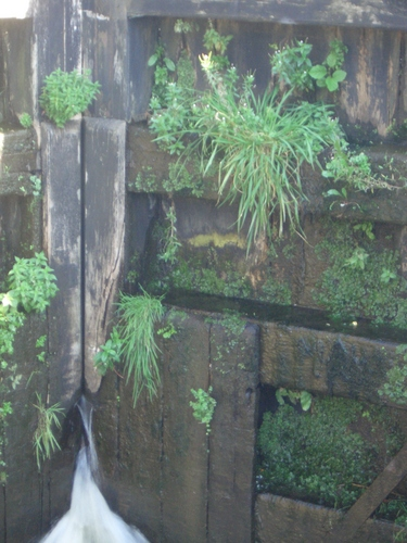 [Picture: Canal lock gates for panorama: 8]