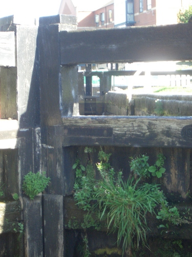 [Picture: Canal lock gates for panorama: 10]