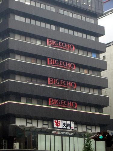 [Picture: Big Echo 2]