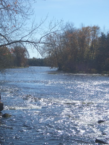 [Picture: River]