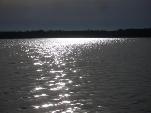 [Picture: Point Petre Evening 1]