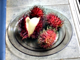 [picture: Rambutan Fruit 1]